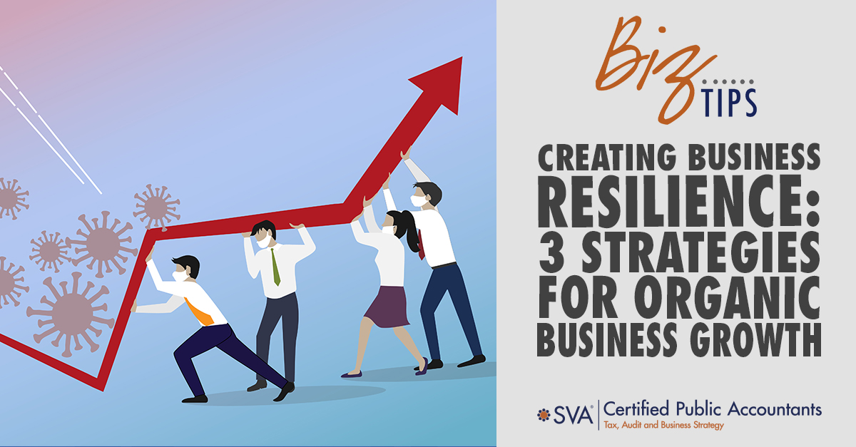 Creating Business Resilience: 3 Strategies for Organic Business Growth